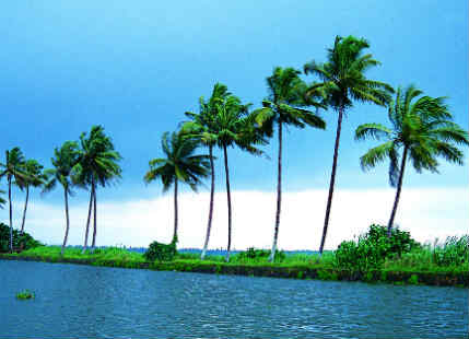 Weather in Kerala