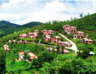 Ooty Travel ft