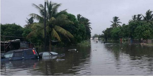 Tropical-Cyclone art