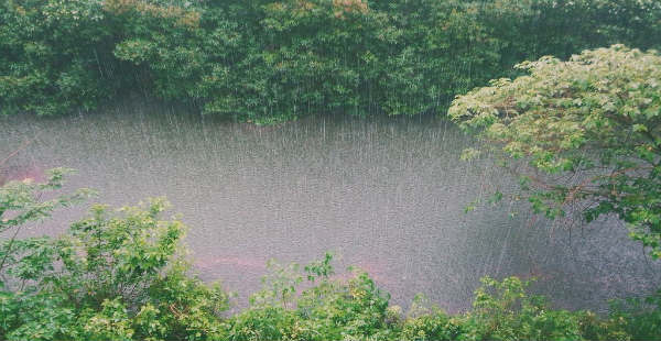 Hindi] Rainy days ahead for Assam, Meghalaya, Arunachal Pradesh and Nagaland | Skymet Weather Services