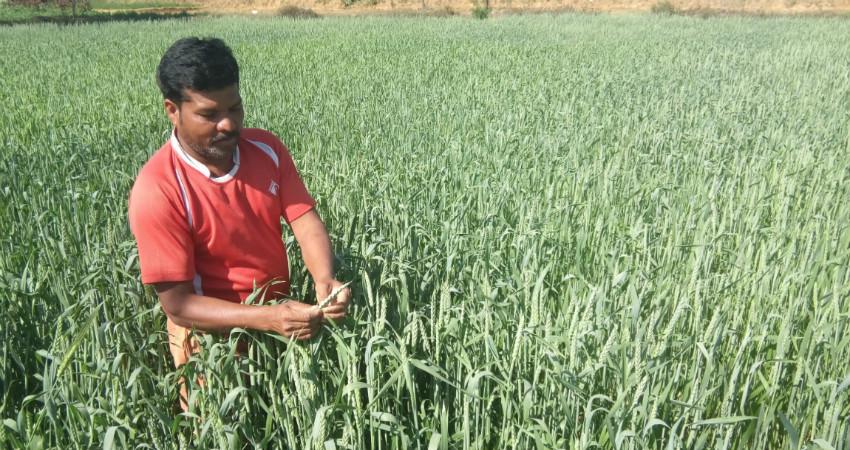 Climate Change and Chhattisgarh