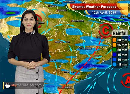 Weather Forecast for April 12: Rains in Punjab, Haryana, dust storm in Rajasthan, Delhi and Uttar Pradesh