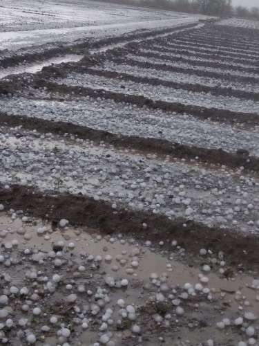 hailstorm in India