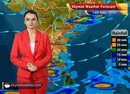 Weather Forecast May 14: Dust storm, thundershowers in Punjab, Haryana, Delhi, rain in Northeast