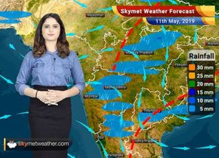 Weather Forecast for May 11: Punjab, Haryana and Delhi to see rain and dust storm, Mumbai to remain dry