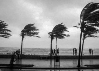 Monsoon Rain in 2019