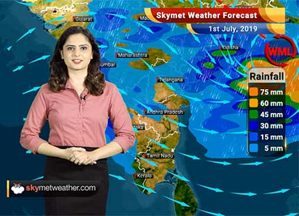 Weather Forecast for July 1: Moderate to heavy rains likely in Vidarbha