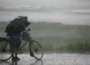 Progress of Monsoon 2019