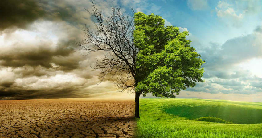 World Environment Day 2019