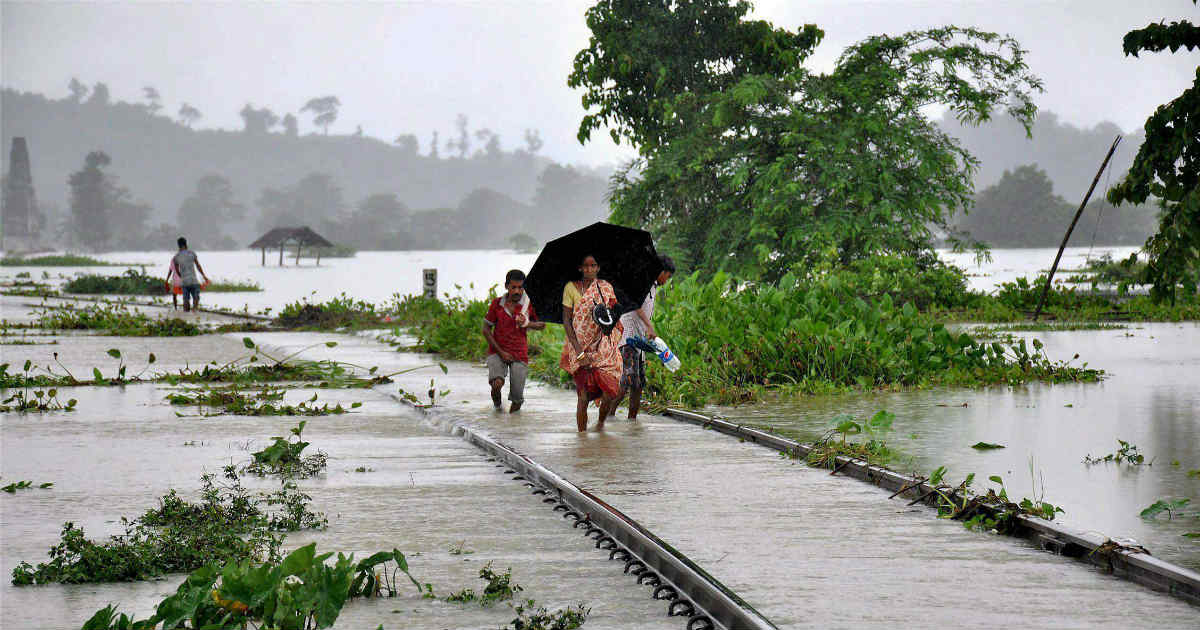 Monsoon Rain in Bihar