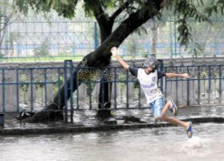 Monsoon Rains in Kolkata