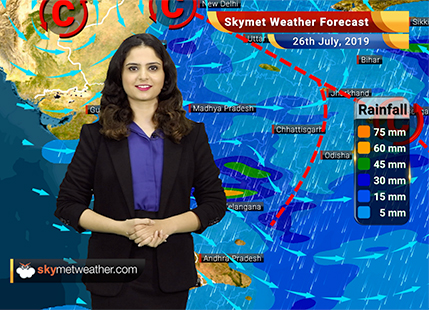 Weather Forecast for July 26: Good rains expected in Konkan and Goa, Vidarbha and Marathwada