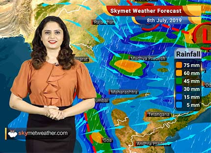 Weather Forecast for July 8: Rains to continue in Maharashtra, moderate to heavy rain in Madhya Pradesh