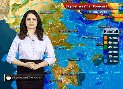 Weather Forecast for July 11: Rain activities to reduce in Mumbai, rain likely in Vidarbha and Marathwada