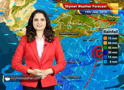 Weather Forecast for July 19: Light to moderate rain expected in Vidarbha and Marathwada
