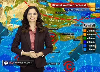 Weather Forecast for July 22: Rain likely in Vidarbha, Madhya Maharashtra and Konkan