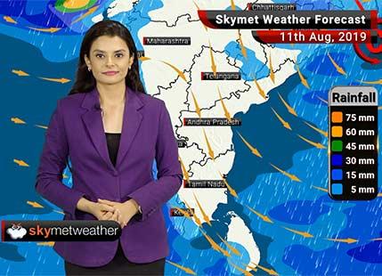 Weather Forecast Aug 11: Heavy rains over Uttarakhand, Himachal Pradesh, parts of Goa, Karnataka and Kerala