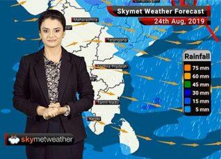 Weather Forecast Aug 24: Moderate rains in Bhopal, Indore, Nagpur, Ranchi, Kolkata and Kerala