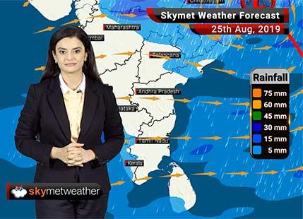 Weather Forecast Aug 25: Heavy Rains in Ujjain, Indore, Ambikapur, Sundergarh, Sambalpur, Bilaspur