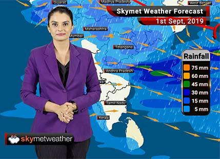 Weather Forecast Sep 1: Good rains likely over Shimla, Nainital, Ujjain, Ratlam, Mangaluru, Goa
