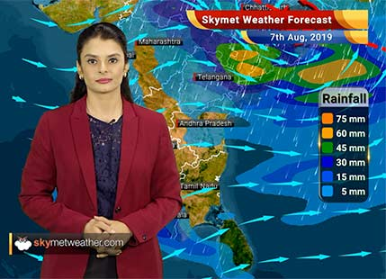 Weather Forecast Aug 7: Hefty flooding rains to lash Bhopal, Indore, Jagdalpur, Betul and Odisha