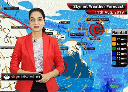 Weather Forecast Aug 11: Good rains in Chandigarh, Rupnagar, Ambala, Panchkula, Saharanpur, Moradabad and Bareilly