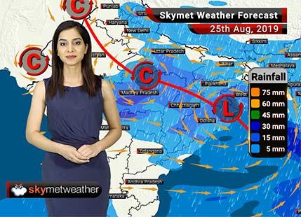 Weather Forecast Aug 25: Rains to lash Himachal Pradesh, Uttarakhand, Uttar Pradesh and Madhya Pradesh