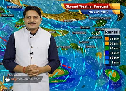 Weather Forecast Aug 7: Flooding rains likely in Odisha, heavy rains possible in Kolkata, Jagdalpur, Bhopal