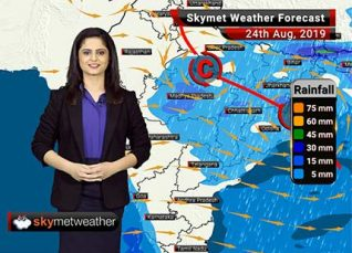 Weather Forecast for August 24: Light to moderate rain in Vidarbha, Madhya Maharashtra and Marathwada, light rain in Mumbai