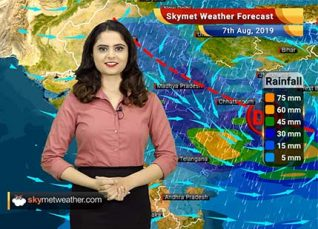 Weather Forecast for August 7: Heavy rains likely in Vidarbha, Marathwada and Madhya Maharashtra