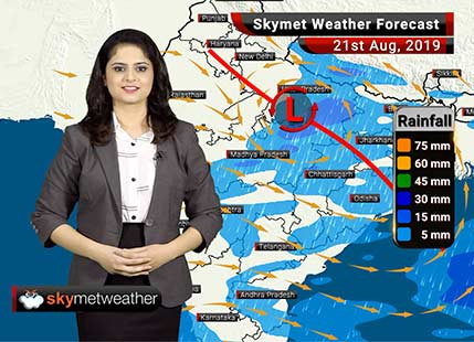 Weather Forecast for August 21: Good rains likely in Akola and Nagpur