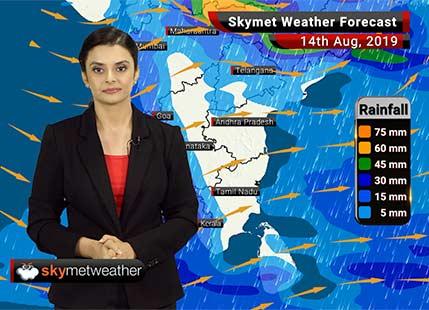 Weather Forecast Aug 14: Heavy rains in Bhopal, Ujjain, Kota, Mangaluru, and parts of Kerala