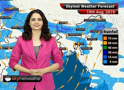 Weather Forecast Aug 19: Good rains likely in Jharkhand, Bihar and East Uttar Pradesh