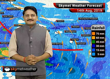 Weather Forecast Aug 14: Heavy rain in Madhya Pradesh, East Rajasthan, Kerala while light in Mumbai, Delhi and Kolkata
