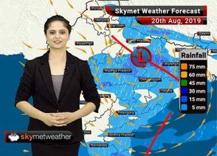 हवामान अंदाज 20 ऑगस्ट: विदर्भात हलका ते मध्यम पाऊस, मुंबईत पाऊस कमीच राहणार