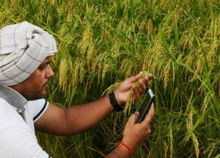 digital farming in India