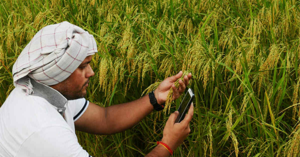 digital farming in India