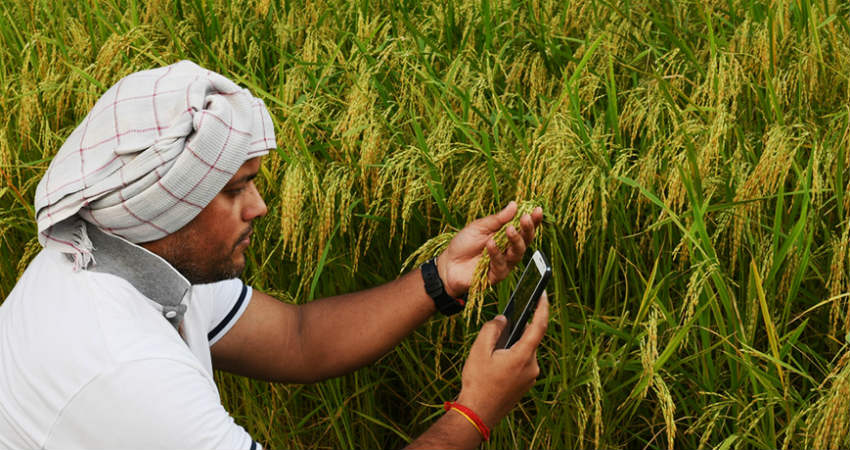 Digital agriculture: Smart Farming in the Digital Age