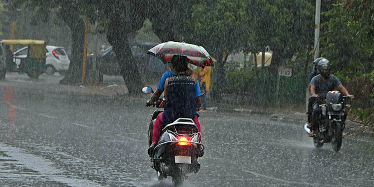 Rain In Punjab : Latest news and update on Rain In Punjab
