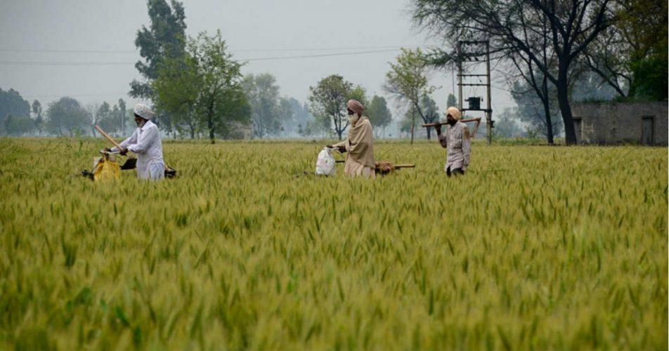 Punjab Haryana