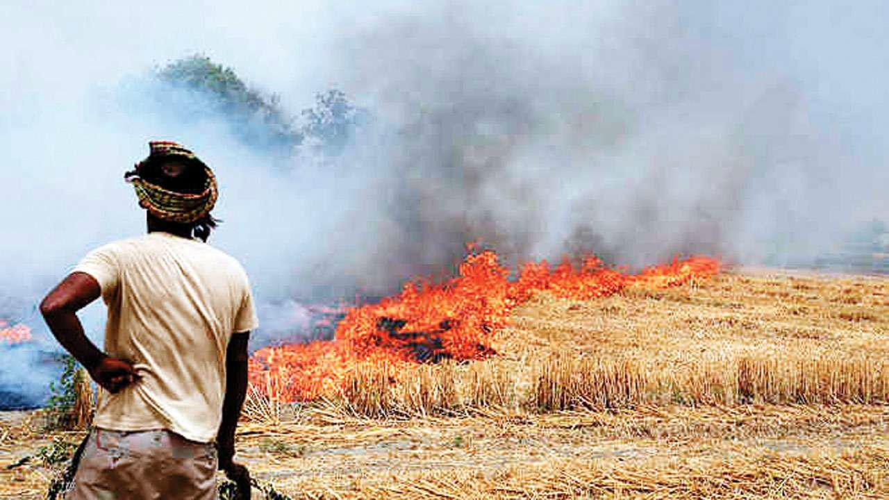 stubble burning in Punjab