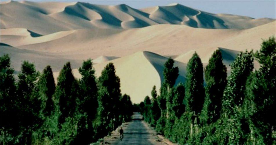 GreenBeltIndia