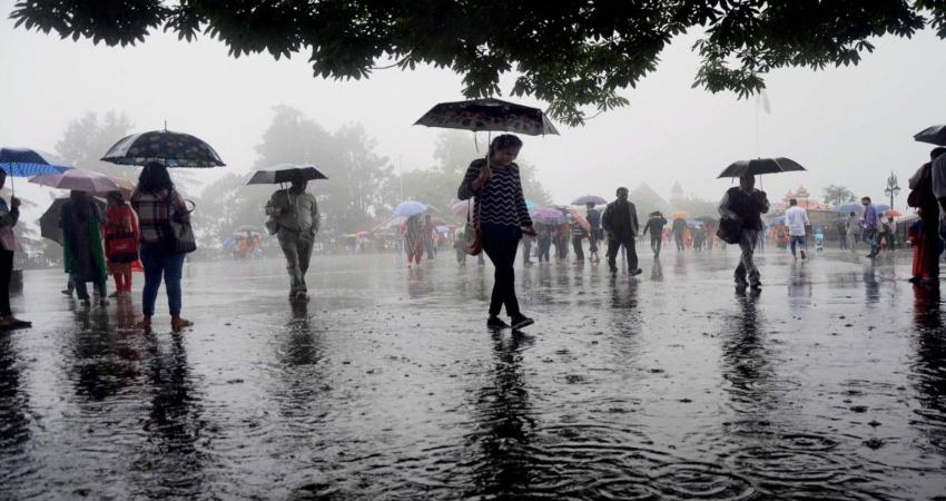 odisha rain (2)