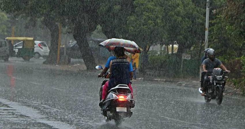 haryana rains (2)