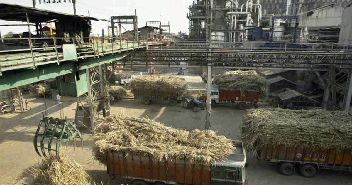 Sugar Mills production