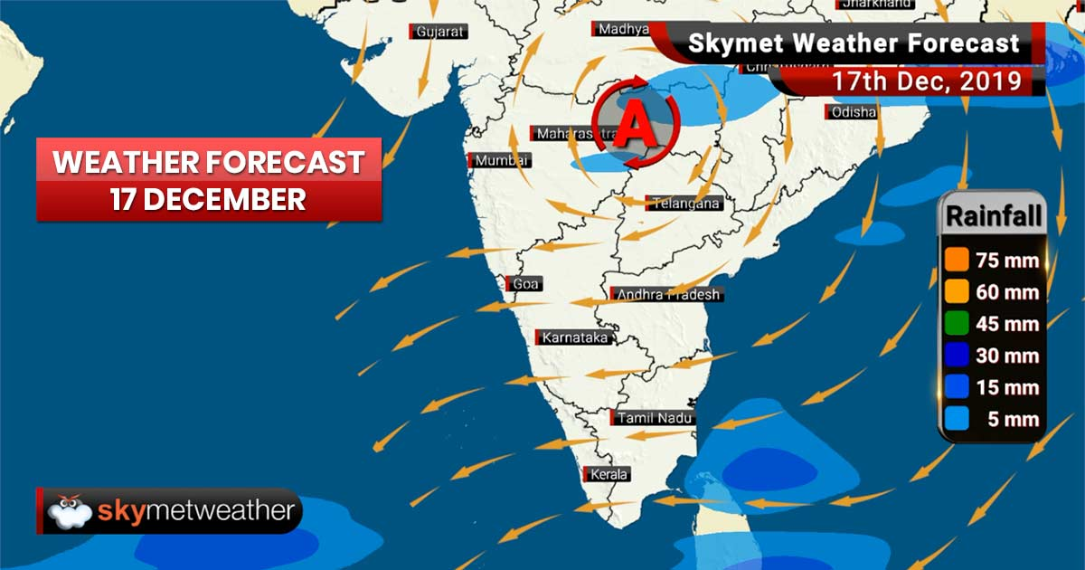 Weather Forecast Dec 17: Cold day conditions in Delhi, Punjab, Haryana, Chandigarh