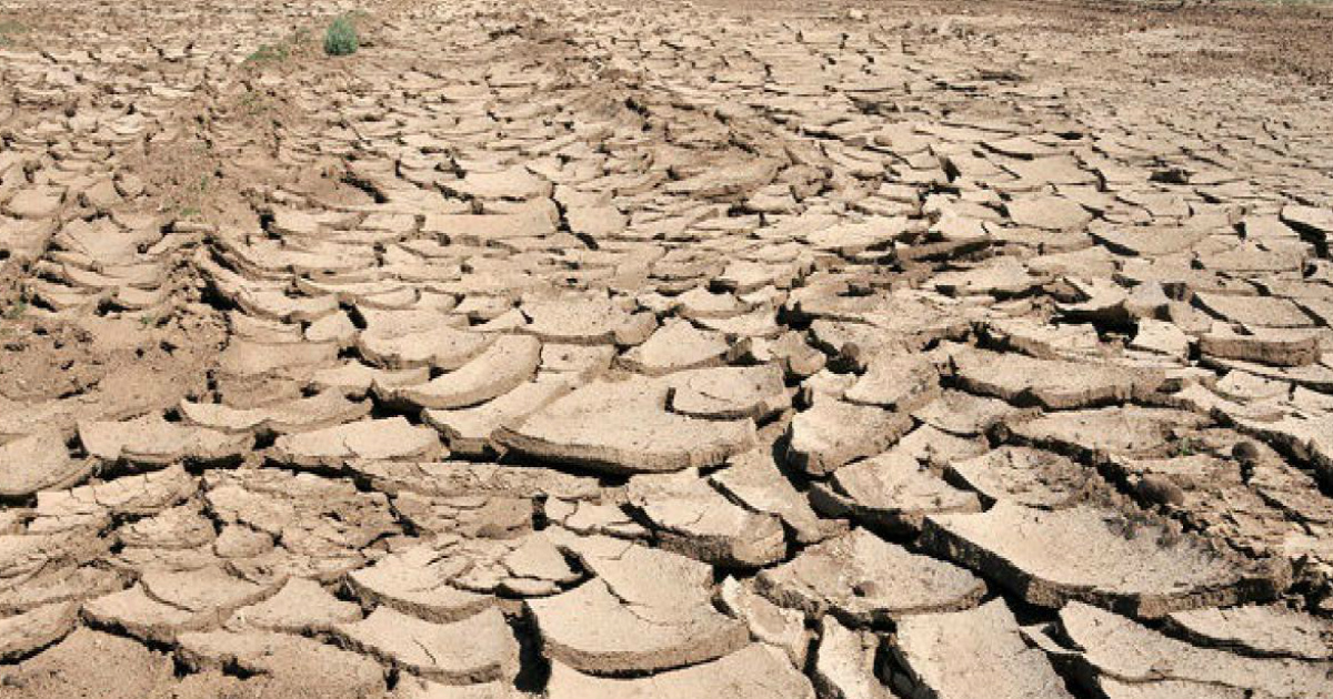 land degradation leading to climate change