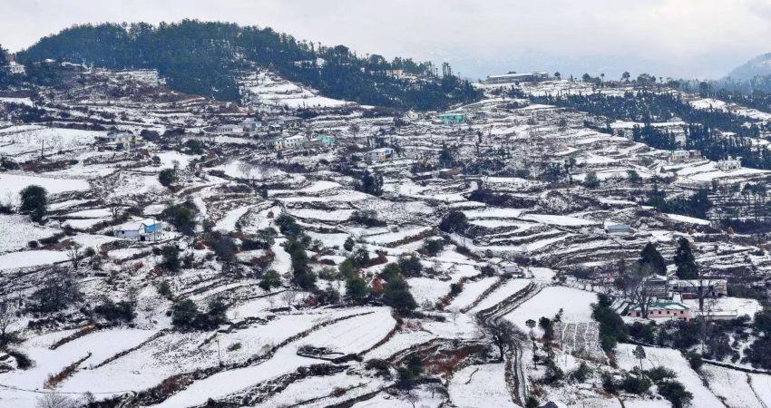 Almora Snow