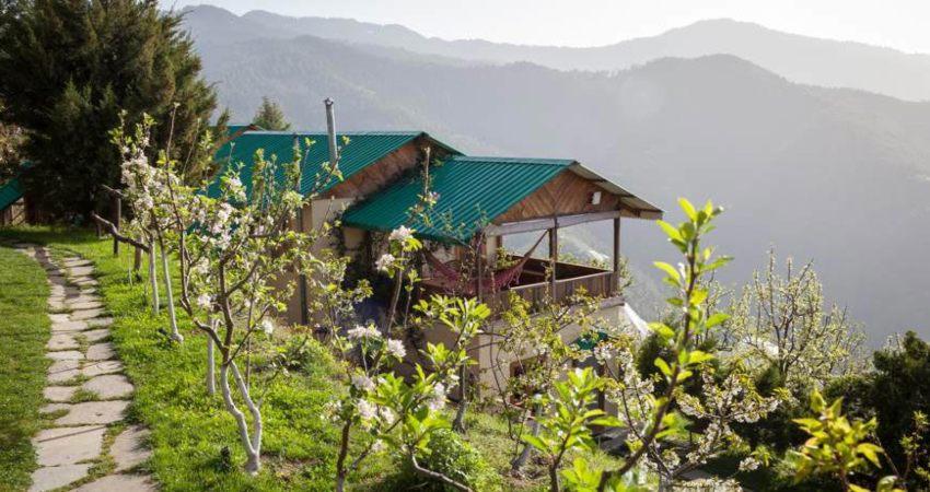 Kotgarh, Himachal Pradesh