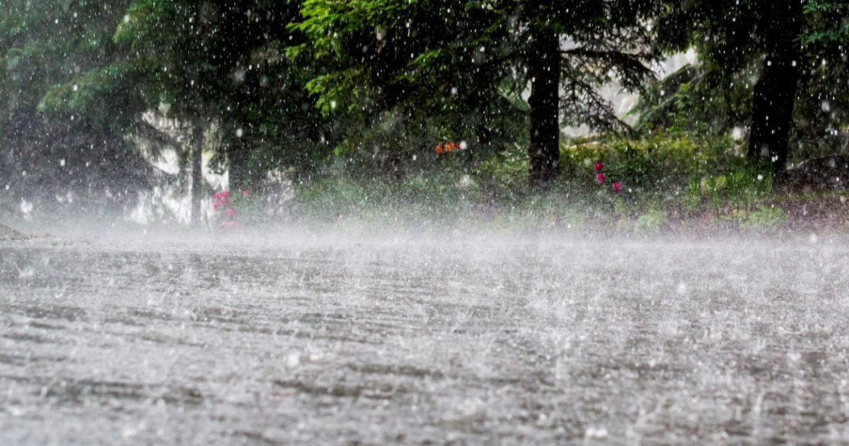 Northeast Monsoon 2020
